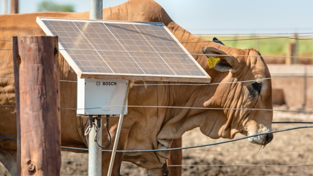 Bosch is connecting beef herds with the web