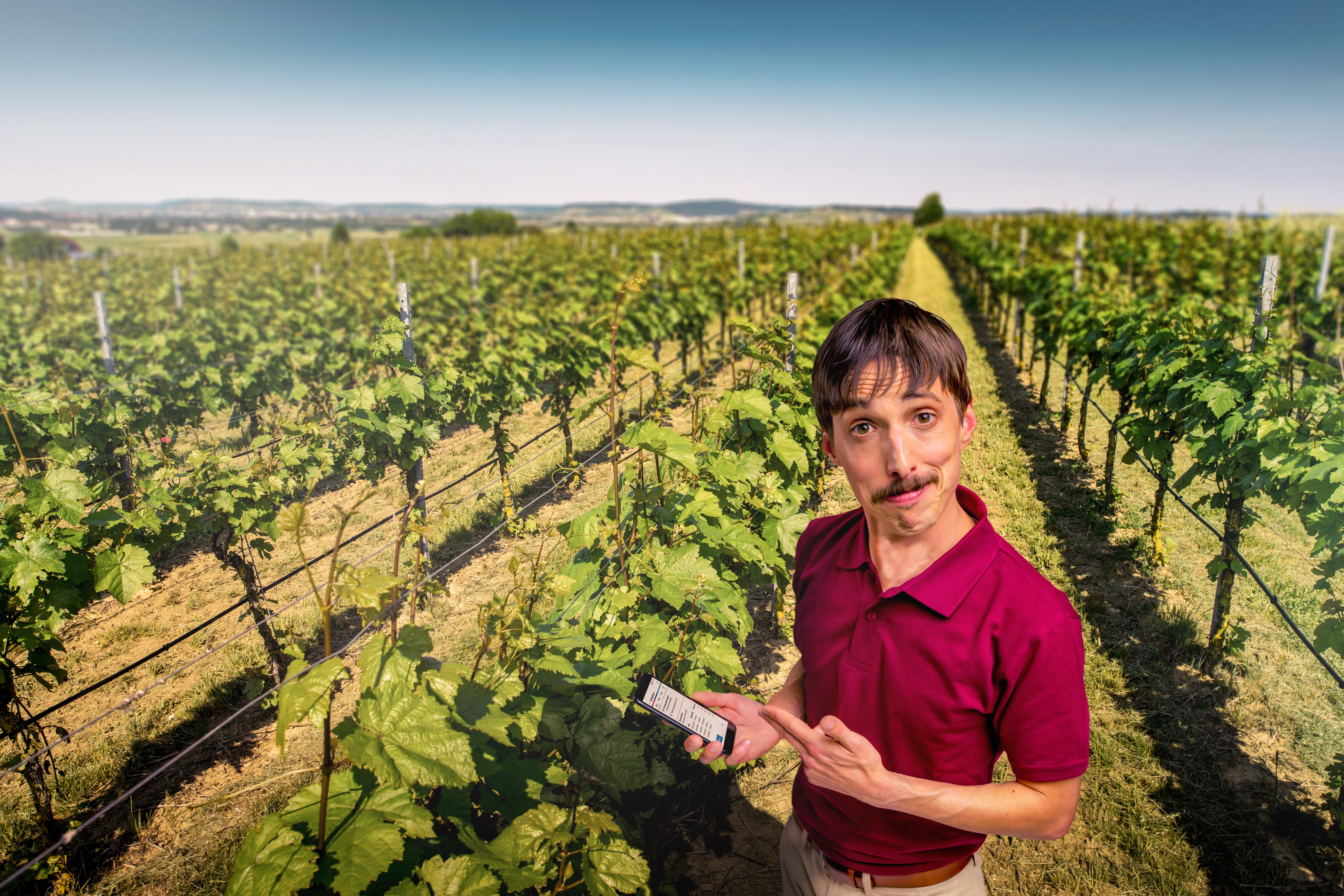 Farm #LikeABosch: vernetzte Sensorsysteme im Weinbau