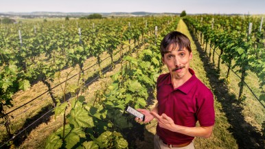 Farm #LikeABosch: connected sensor systems in viticulture