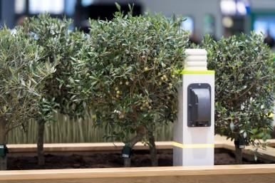 Keine bösen Überraschungen: Obst und Gemüse per Smartphone schützen