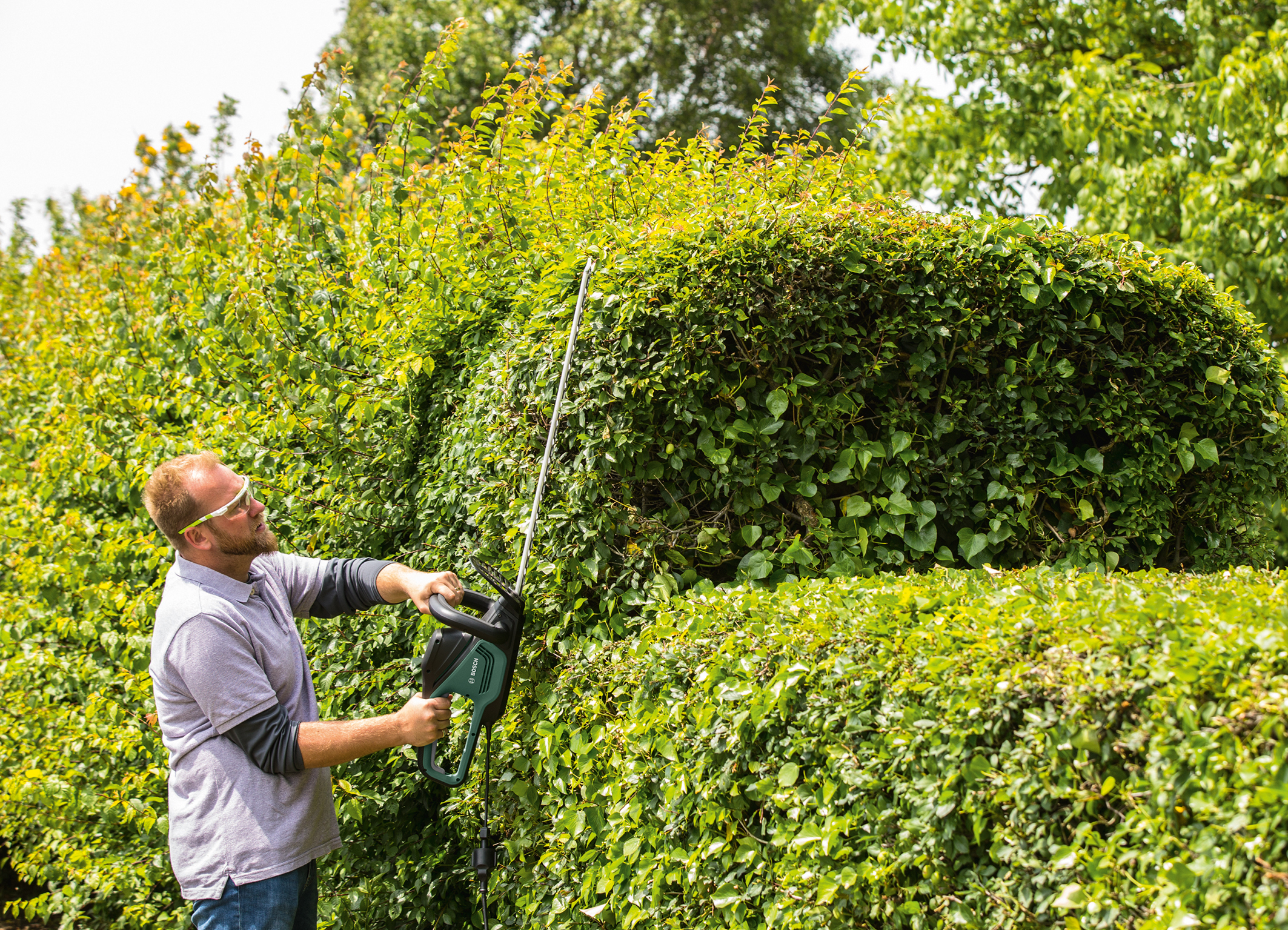 Efficient, comfortable hedge maintenance:  UniversalHedgeCut 50 and UniversalHedgeCut 60