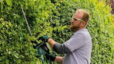 Quietest hedgecutters on the market: Extension of ProSilence range from Bosch