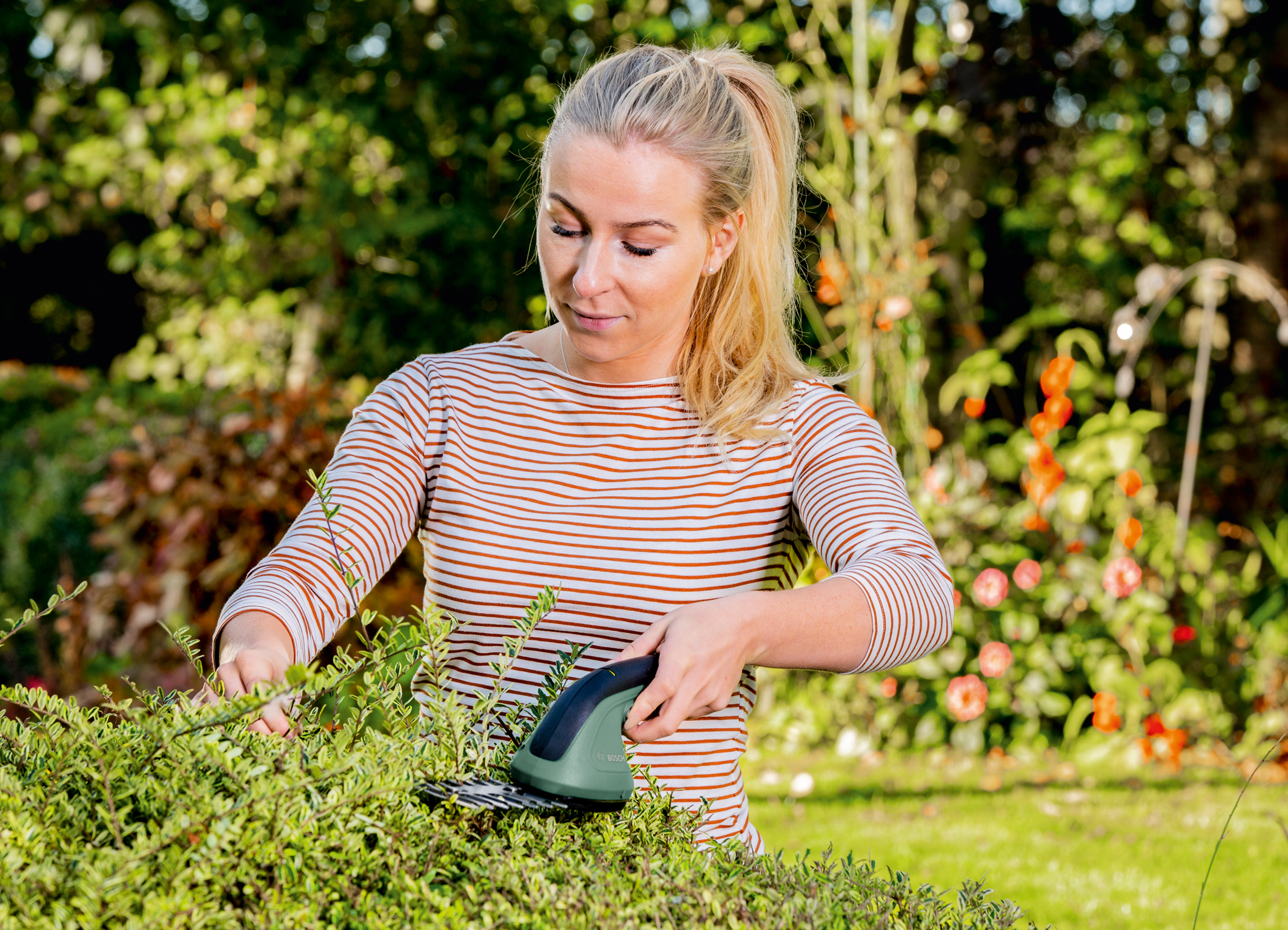 Der 2-in-1 Akku-Helfer im Garten:  Neue Bosch Strauch- und Grasschere EasyShear