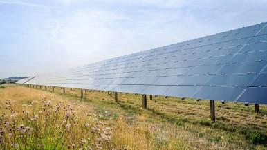 Klimaneutralität: Bosch baut Versorgung mit regenerativen Energien aus