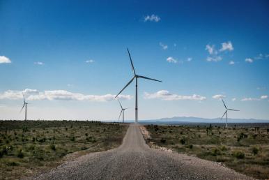 """Wind farm """"Dominica"""" in Mexico"""