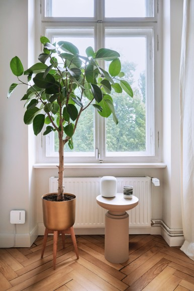 Bosch Smart Home controlled via Apple HomePod