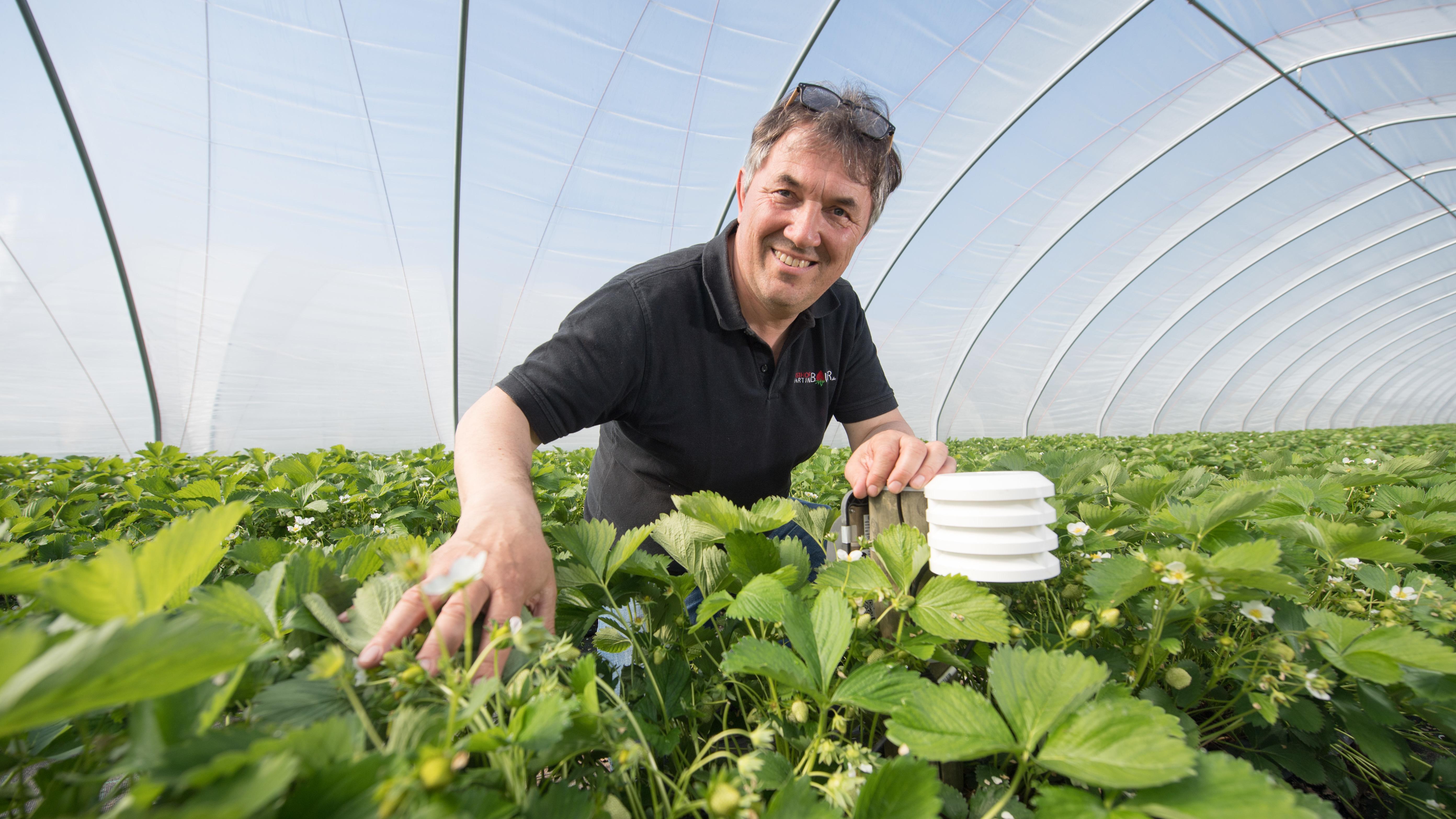 Der Landwirt Martin Bauer hat sechs seiner Felder mit dem Sensor-Sytem bestückt
