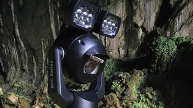 Bat watching in Borneo's UNESCO World Heritage Mulu National Park with MIC Cameras from Bosch