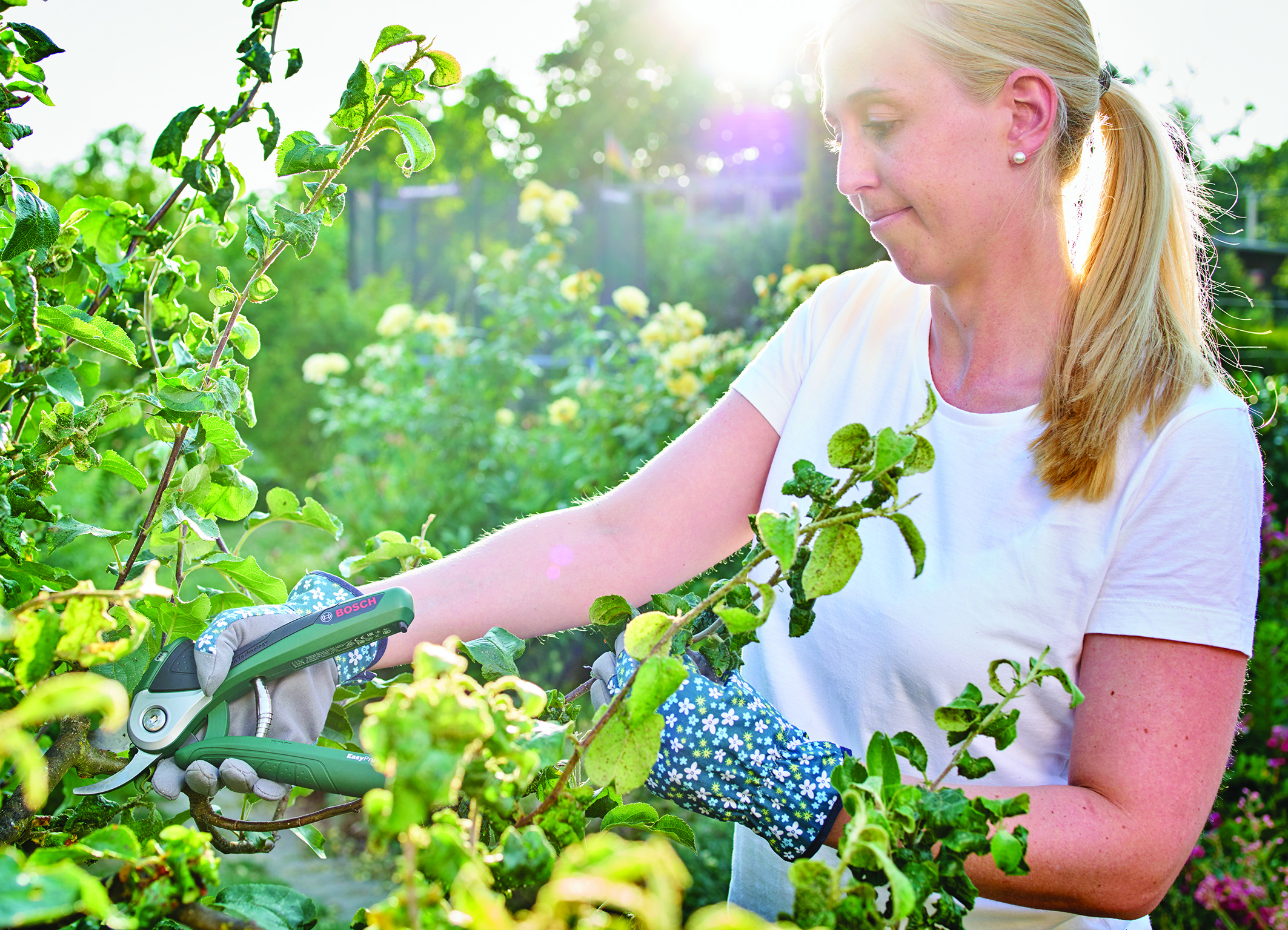 Power-assist technology for a boost when you need it: Bosch EasyPrune power-assisted cordless secateurs
