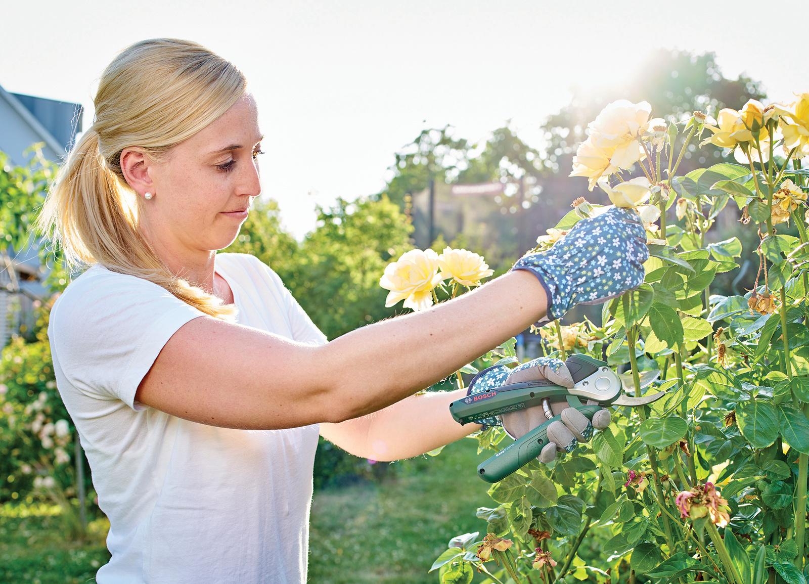 Saubere Schnitte in jedes Material – von faserig bis dick:  Kraftunterstützte Akku-Gartenschere Bosch EasyPrune