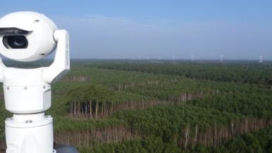 """""""Onde há fumaça, há fogo"""" - câmeras Bosch monitoram florestas de distrito polonês"""