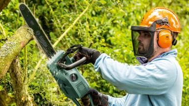 Rychlé, čisté a komfortní: Dvě nové řetězové pily od firmy Bosch