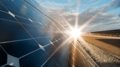 Neutralność klimatyczna: Bosch zwiększa udział energii elektrycznej ze źródeł od ...